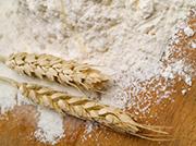 Wheat & Flour